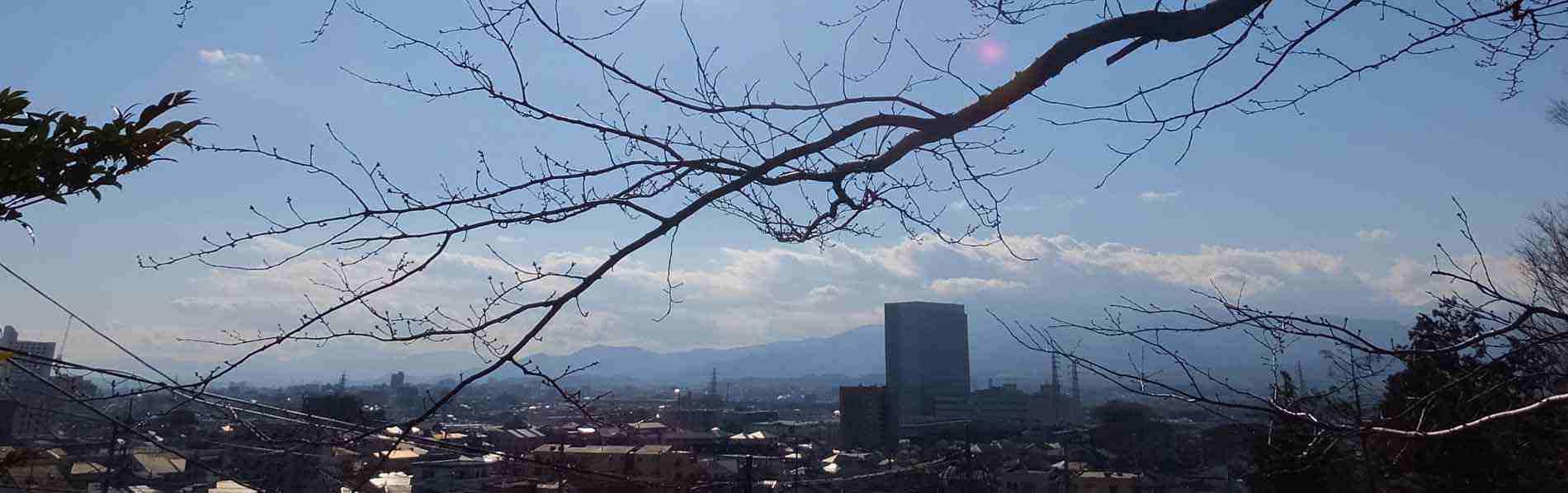 本殿から望む大山丹沢の峰々です。